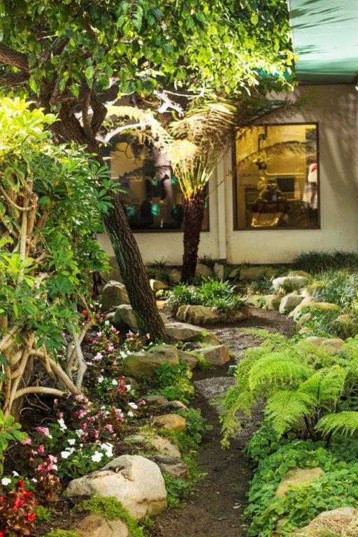 image_54 Garden